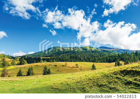 wonderful countryside in mountain 54022813