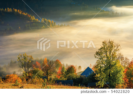 glowing fog at sunrise in mountains 54022820