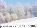 winter scenery with trees in hoarfrost 54022882