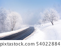 road through forest in winter 54022884