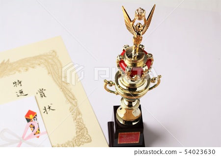 award 54023630