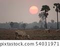 캄보디아 석양 54031971