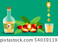 plam oil and palm fruit on the green background 54039119