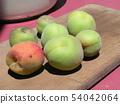 我收获了加贺李子水果。 54042064