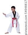 Master Belt TaeKwonDo athletes fighting pose boy 54046617