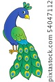 Peacock theme image 2 54047112