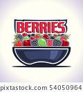 Vector logo for Berries 54050964