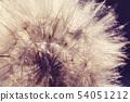 Blowball 54051212