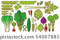 蔬菜_變種 54067883