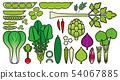 蔬菜_變種 54067885