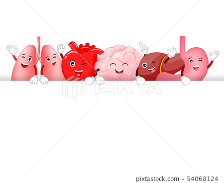 Set of funny cute cartoon internal organs. 54068124