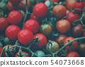西紅柿 番茄 新鮮 54073668