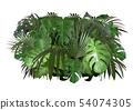 Tropical Leaves Foliage Arrangement 54074305