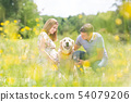 Young happy pregnant couple petting it's Golden retriever dog outdoors in meadow. 54079206