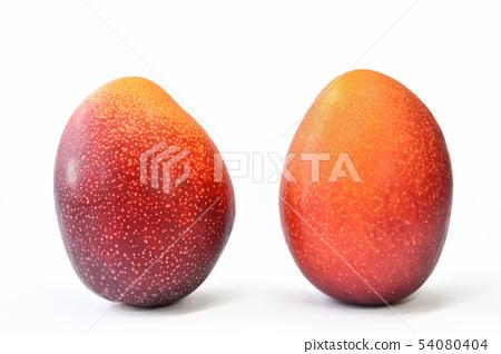 Two ripe mangoes 54080404