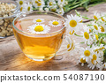 Daisy flowers in transparent glass tea cup. 54087190