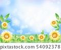 向日葵和天空_背景 54092378