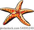海星圖像 54093249