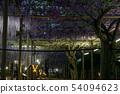Wisteria light up 54094623
