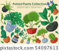 House flowers indoor floriculture super sale poster vector illustration. Nature home decoration 54097613