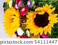Sunflowers on white 54111447