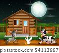 Farm animals playing in the night scene 54113997