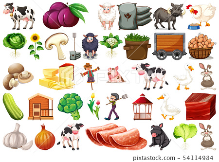 Large set of farm scene 54114984