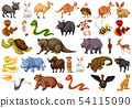 Set of wild animals 54115090