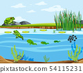 Frog life cycle diagram 54115231