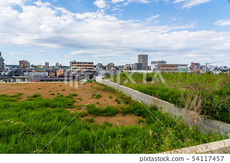 고원 지대 조성지에서 보는 도시 풍경 54117457