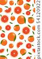 橙色 橘子 橙子 54120922