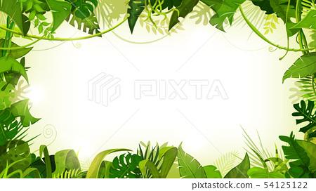 Jungle Tropical Landscape Wide Background 54125122