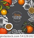 Orange fruit design template. Hand drawn vector 54126162