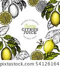 Lemon tree frame template. Hand drawn vector fruit 54126164