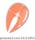 Raw salmon steak flat vector illustration 54131854