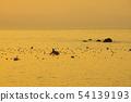在有明海的海带捕鱼 54139193