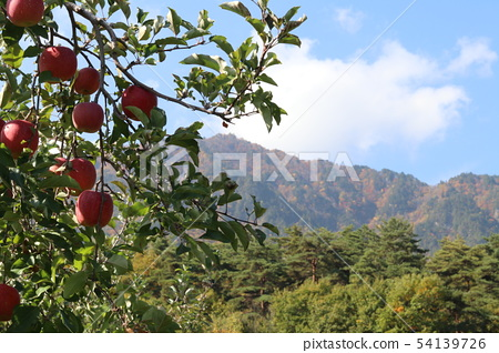 Apple in the Alps 54139726