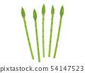 Asparagus 54147523