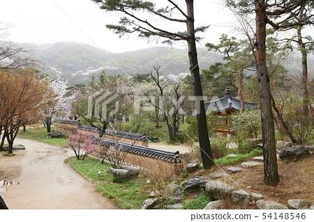 호암미술관,용인시,경기도 54148546