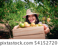 Portrait of Attractive Farmer Woman is Harvesting 54152720
