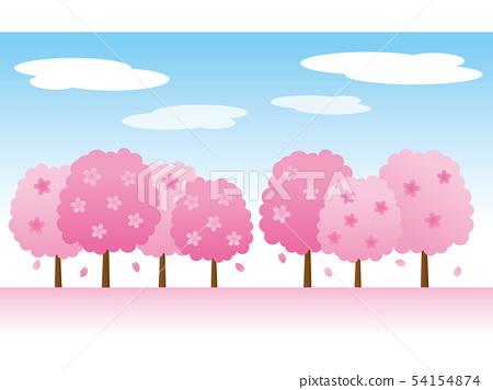 Cherry trees 54154874