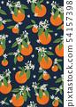 橙色 橘子 橙子 54157398