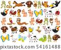 Set of cute animals 54161488