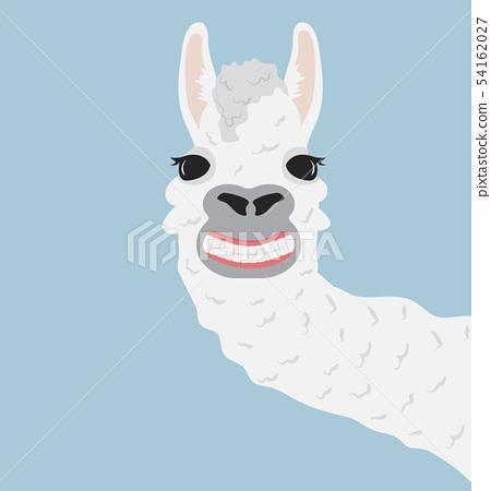 Happy llama smile Vector Illustration 54162027