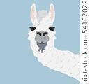 Happy head llama Vector Illustration 54162029