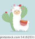 llama alpaca  fluffy with cactus plant 54162031