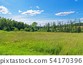 Meadow against blue sky in Luneburg Heath, Germany 54170396