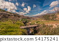 Spring in the valley 54175241