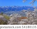 [사이타마 현] 아름다움 산 공원의 벚꽃 54180135
