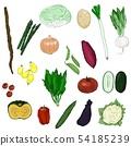หลากหลายผัก 54185239